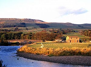 River Ewer and farmland, Yorkshire Dales.